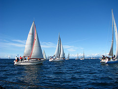 Image of sailboats on the water