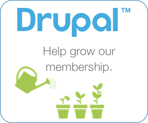 Support the Drupal Project